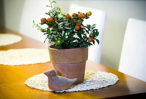 Фруктовый сад в гостиной