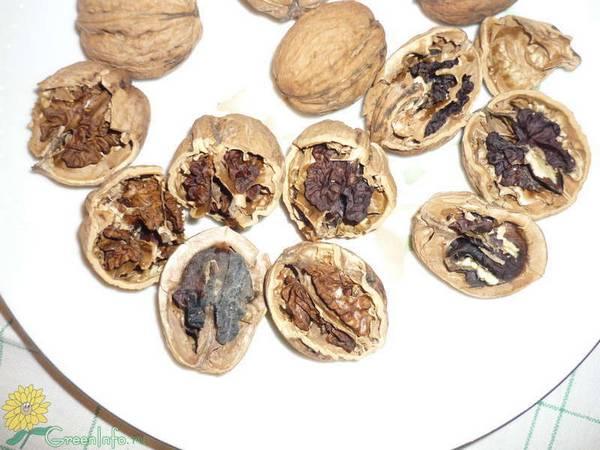 Как хранить орехи в домашних условиях, чтобы они не испортились