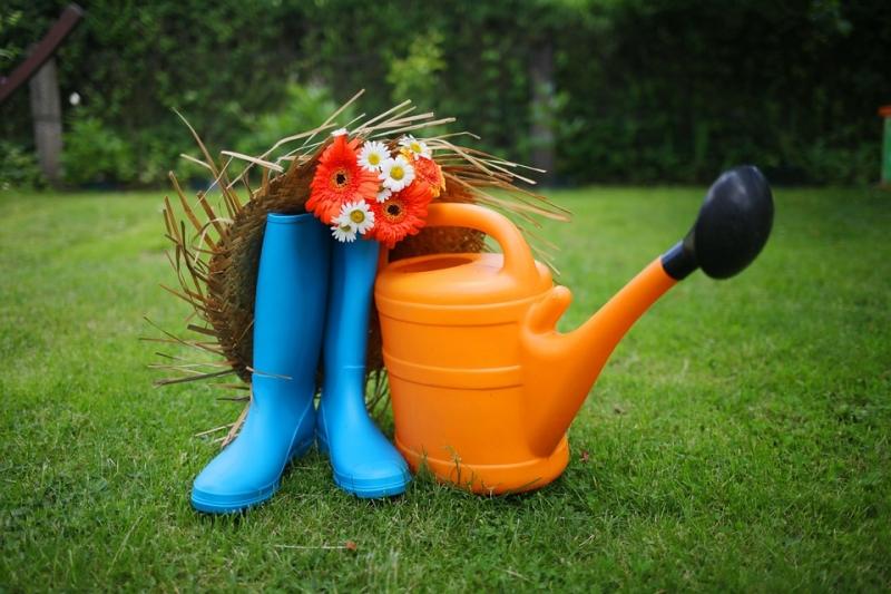 Лунный календарь садоводов и огородников на июль 2019 года