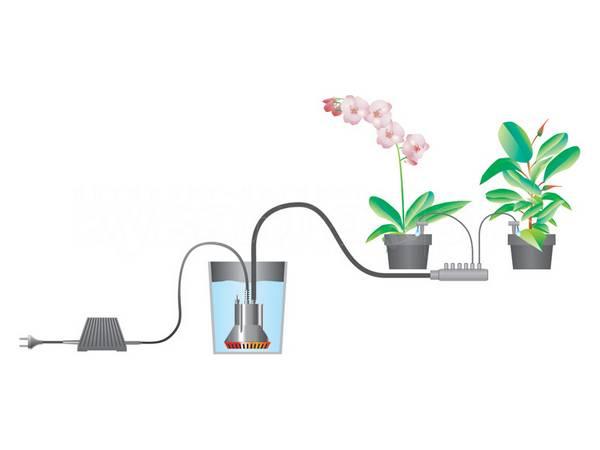 Обзор систем микрокапельного полива для теплиц