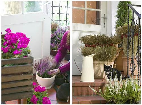 Оригинальные букеты на балкон